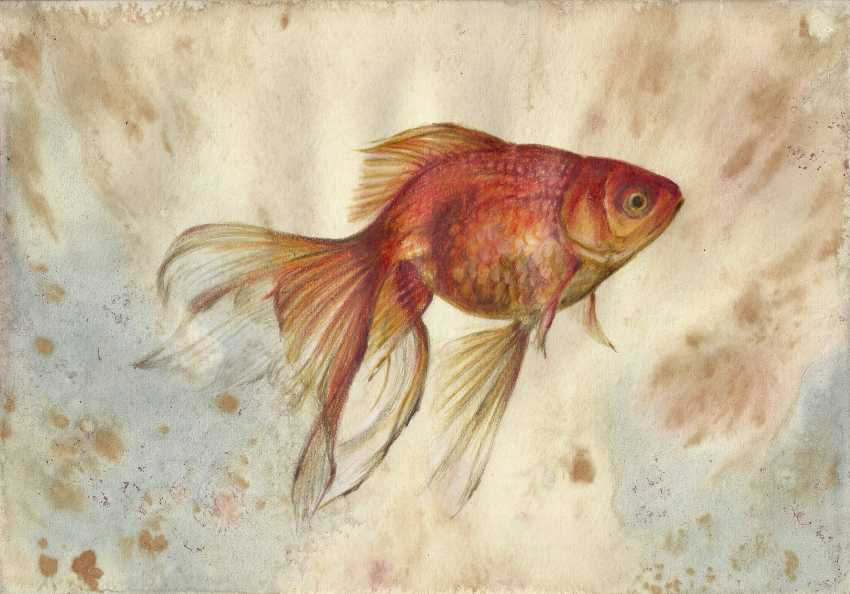 Natasha Mishareva. Goldfish. 2019. Handmade. The Author - Natalia Pisareva - photo 1