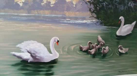 Lukas Erzroll. Swans - photo 2