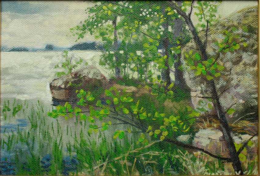 Alexander Bezrodnykh. The lake.Lump - photo 1