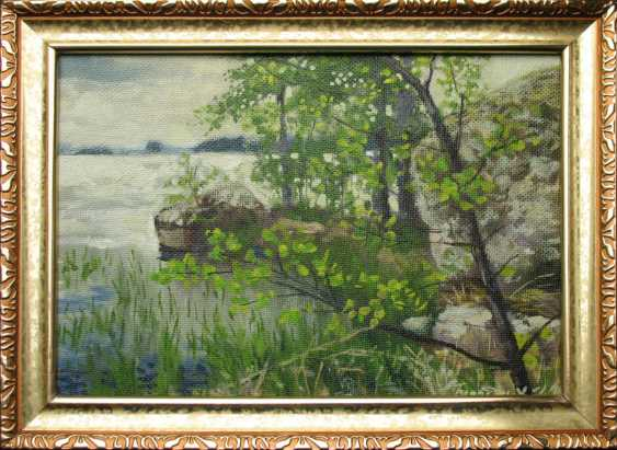 Alexander Bezrodnykh. The lake.Lump - photo 2