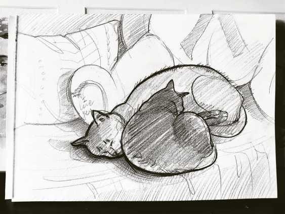 Darya Efremova. Liebhaber seinen Schönheitsschlaf - Foto 1