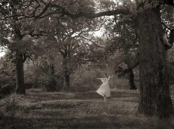 "Andriy Kotliarchuk. ""La sylphide"" - photo 1"