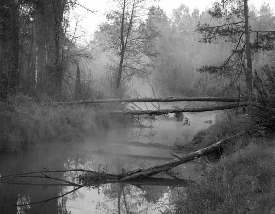 Andriy Kotliarchuk. Morning on the river Perha - photo 1