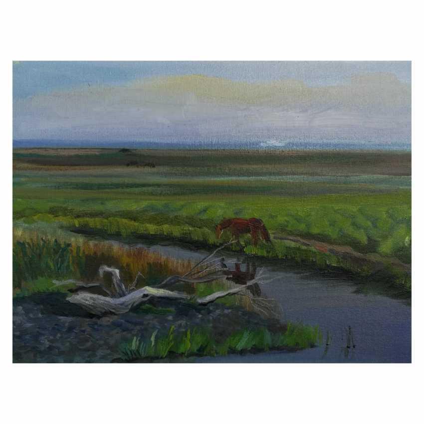Anastasiia Khaliova. The Baikal landscape with a horse - photo 2
