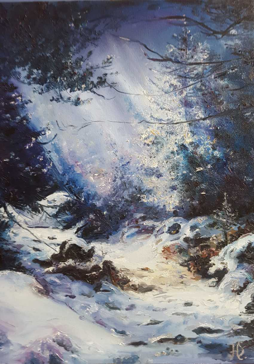 "Nataliia Zhyzhko. ""Winter's tale"" - photo 1"