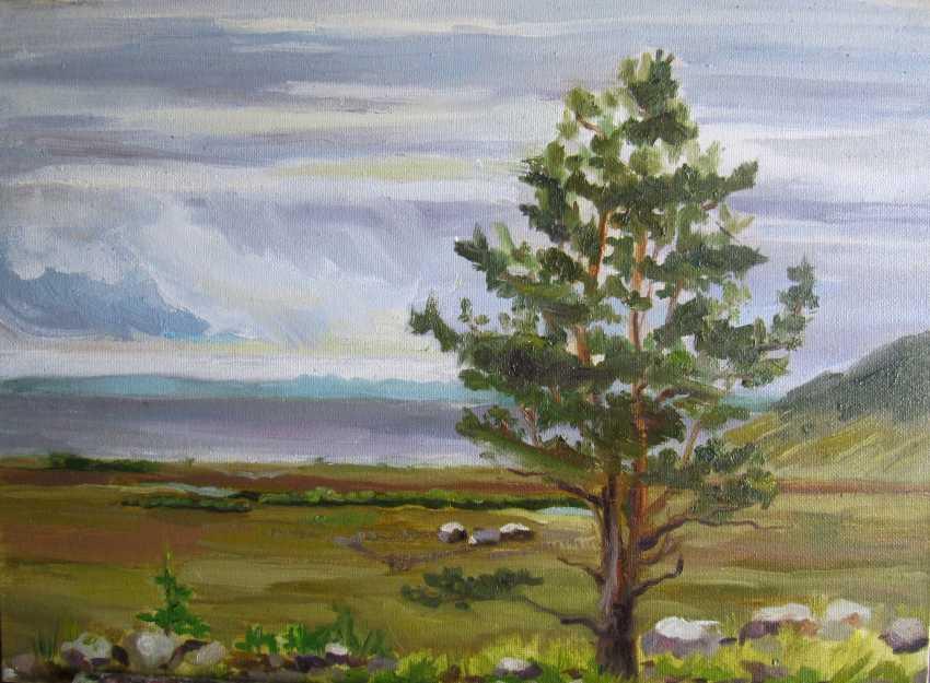 Anastasiia Khaliova. Lake Baikal view - photo 1