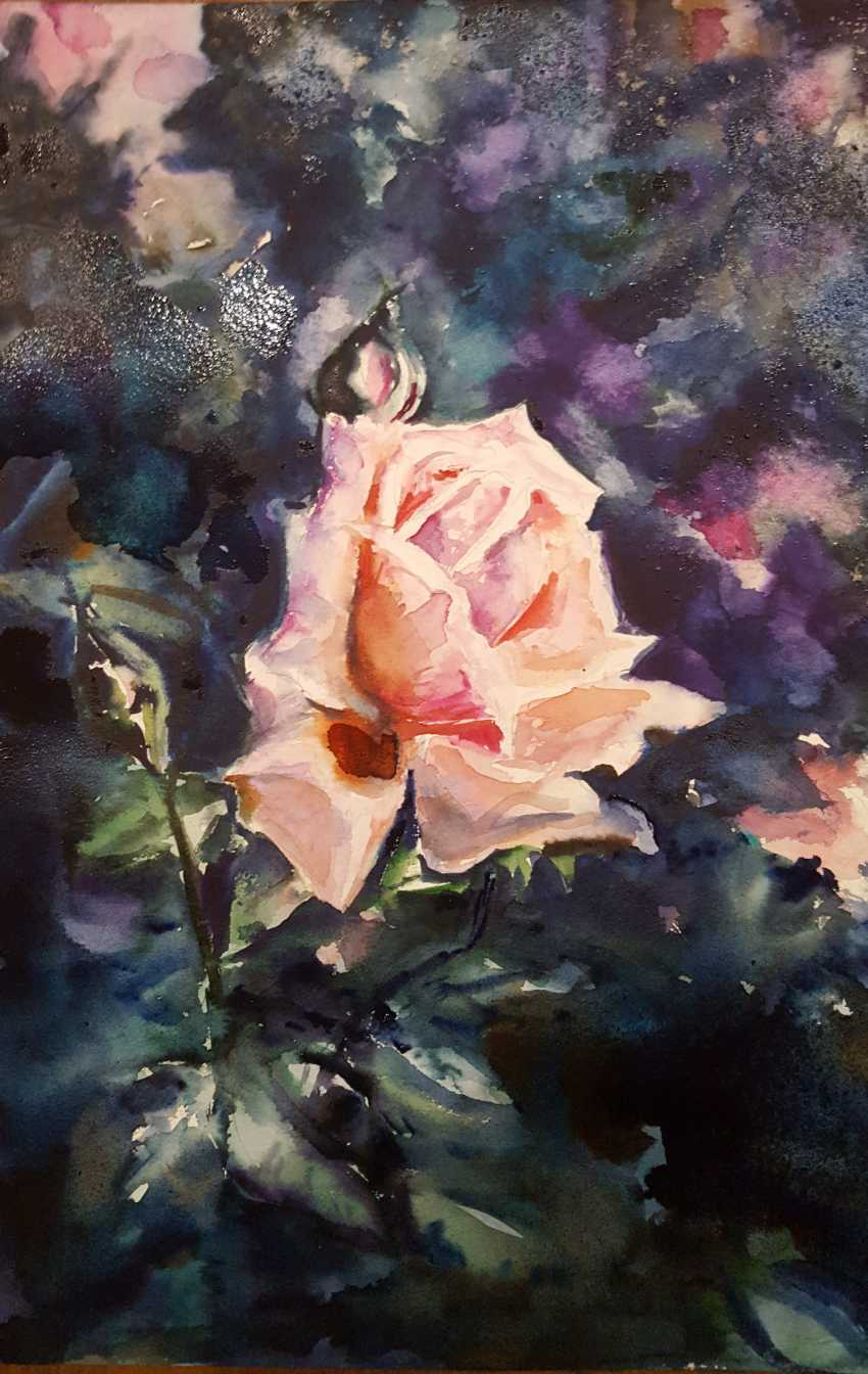 Nataliia Zhyzhko. My watercolor rose - photo 1