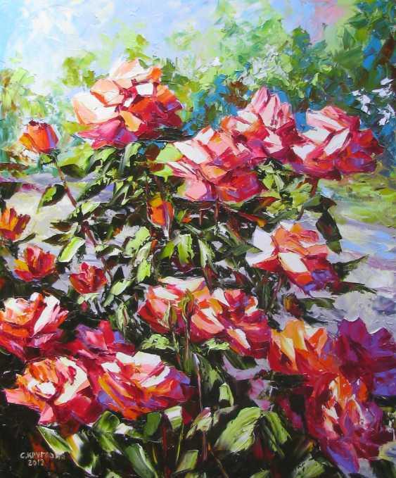 Svetlana Kruglov. Red roses in the garden - photo 1
