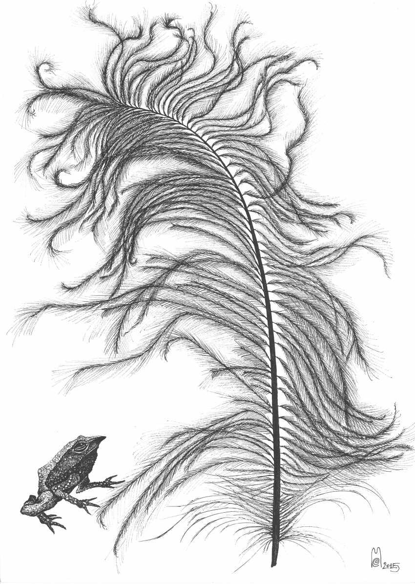Ekaterina Marakhovskaya. Ostrich feather - photo 1