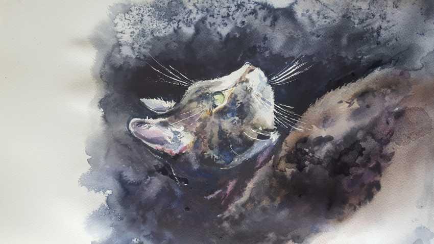 "Nataliia Zhyzhko. My watercolor""the cat"" - photo 1"