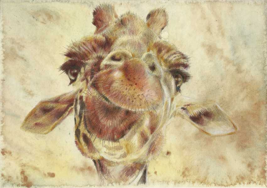 Natasha Mishareva. Giraffe. Drawing, handwork, 2019 Author - Pisareva Natalia - photo 1