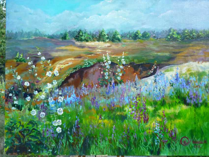 Marina Ivanova. cornflower field - photo 1