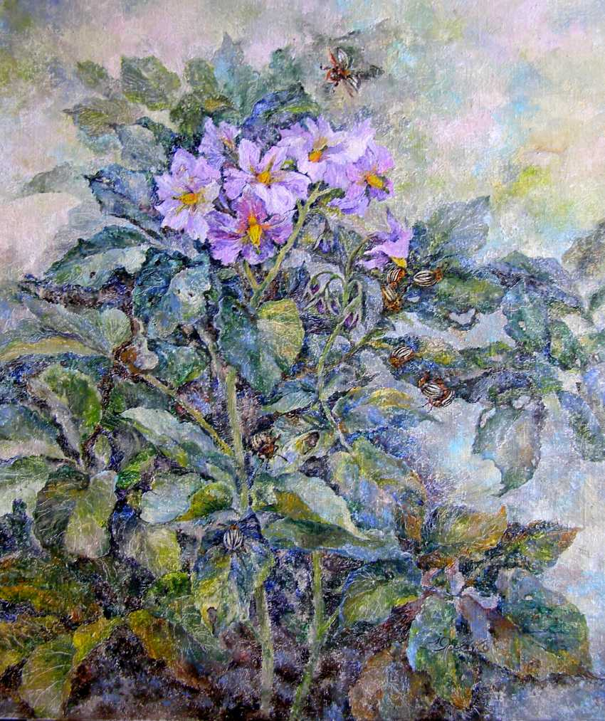 Irina Yaresko. Time potatoes - photo 1