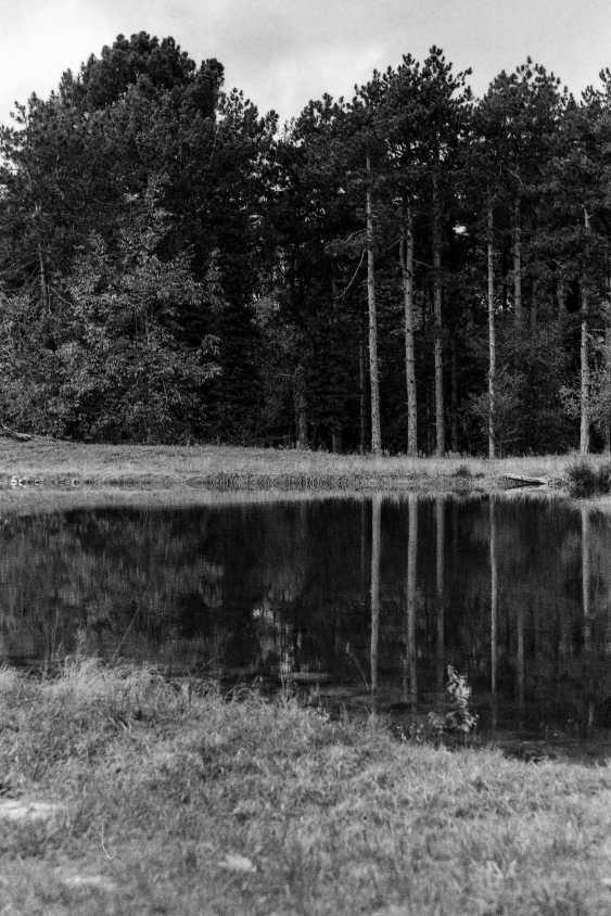 "Adam Kypriadis. ""Reflections"", Shot on film - photo 1"