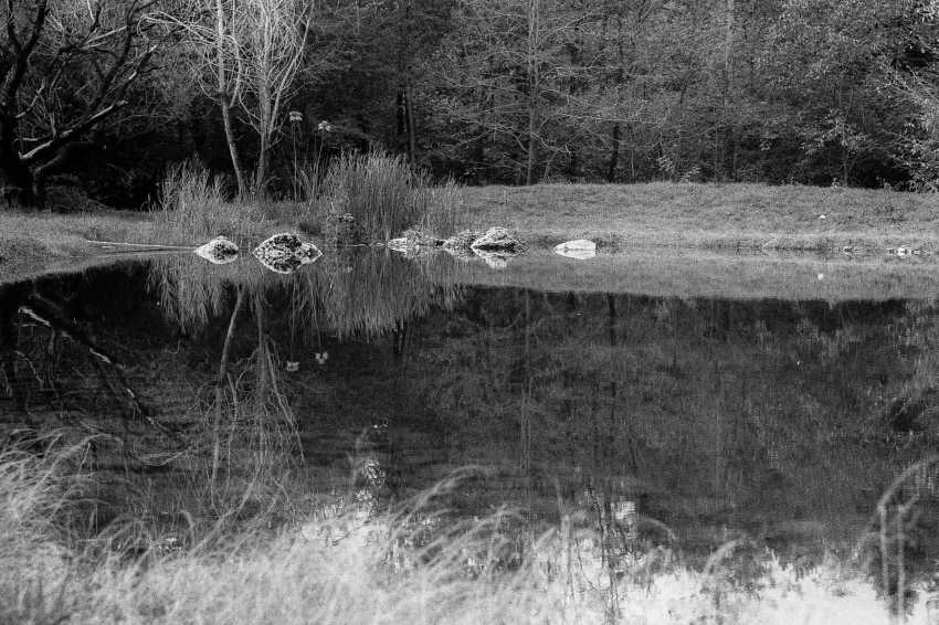 "Adam Kypriadis. ""Calmness"", Shot on film - photo 1"