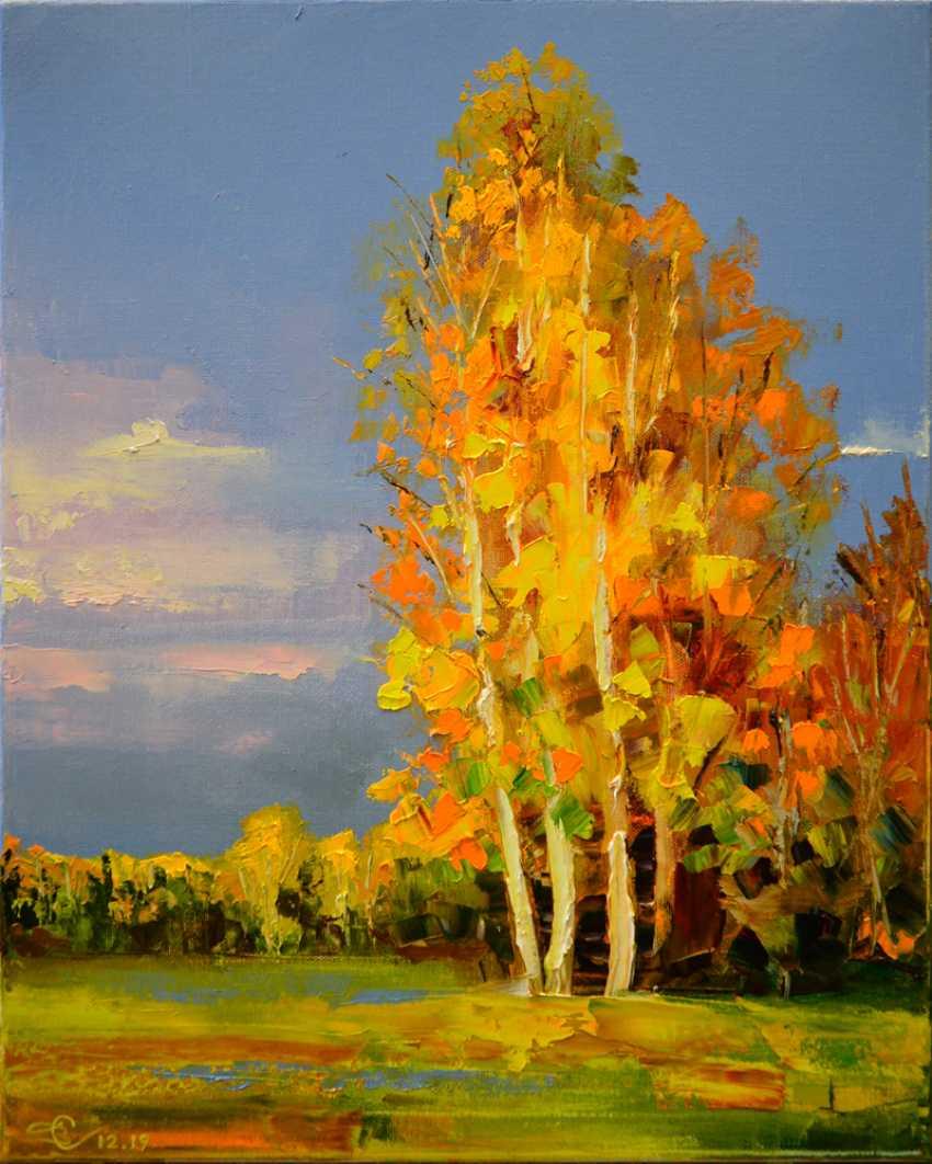Vadim Stolyarov. Portrait of autumn - photo 1