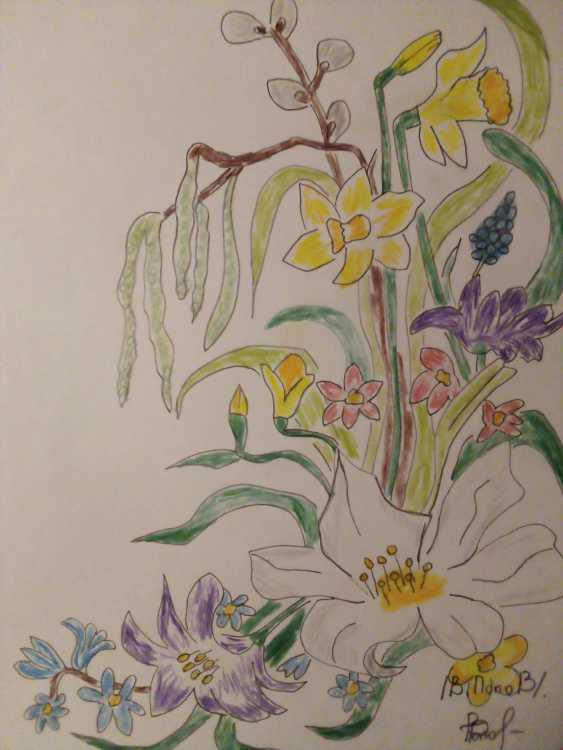 Vladimir Popov. The best floral pencils in the CIS #2 - photo 1