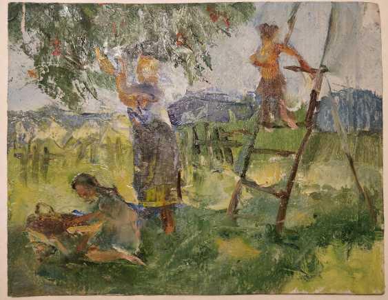 Olena Balykova. Harvesting - photo 1