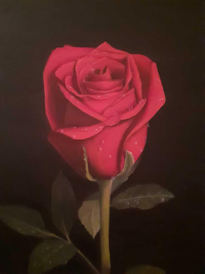 DMITRIY POKANEVICH. rose - photo 1