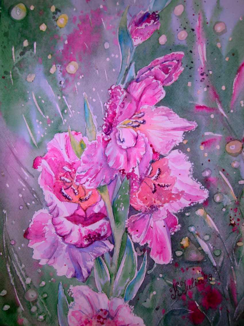 Julia Koliada. Gladiolus in the garden - photo 1