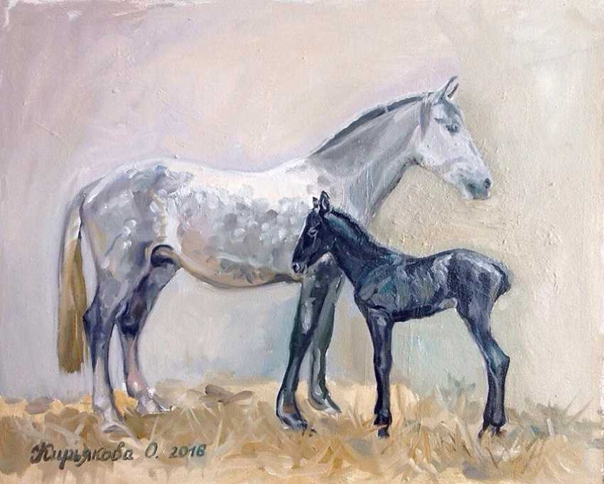 "Olga Kiryakova. ""The foal was born"" - photo 1"