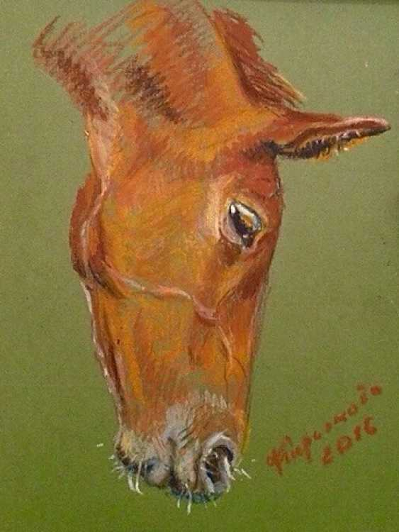 "Olga Kiryakova. ""Foal's head"" - photo 1"