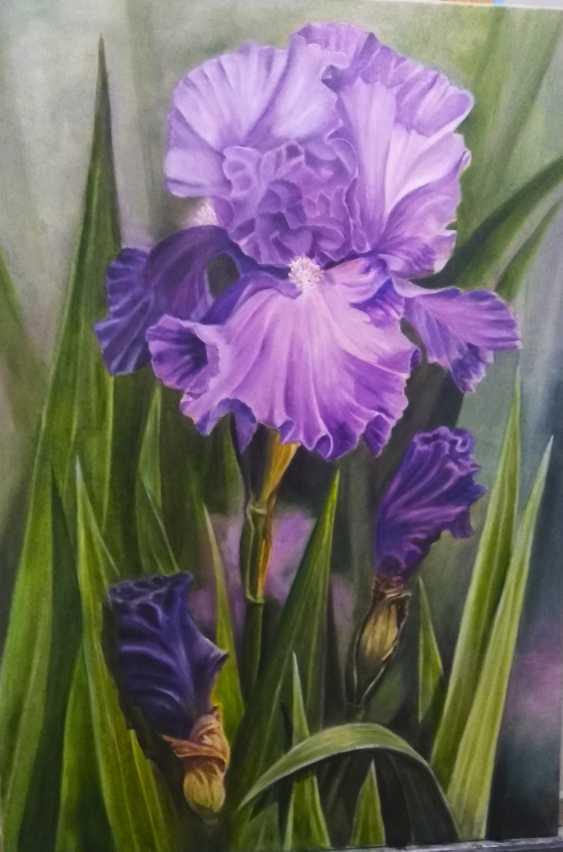 Iryna Tomilova. Irises - photo 1