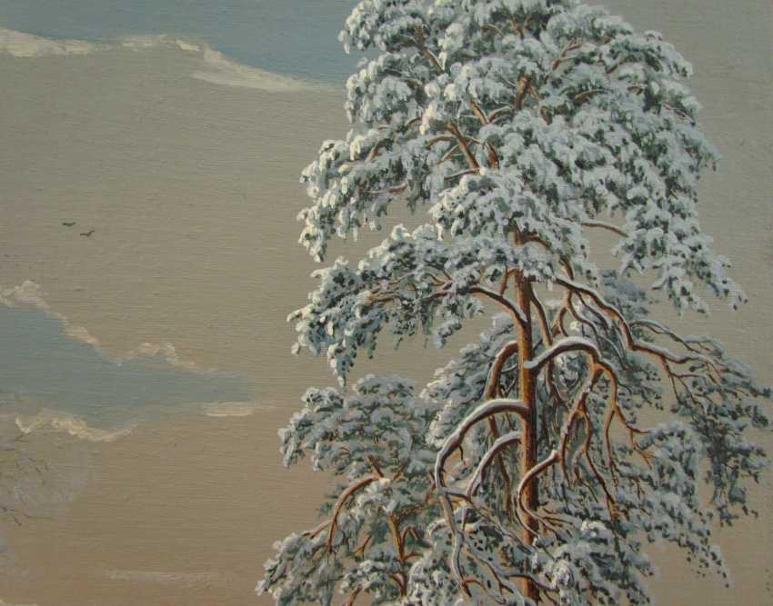 Winter landscape - photo 3