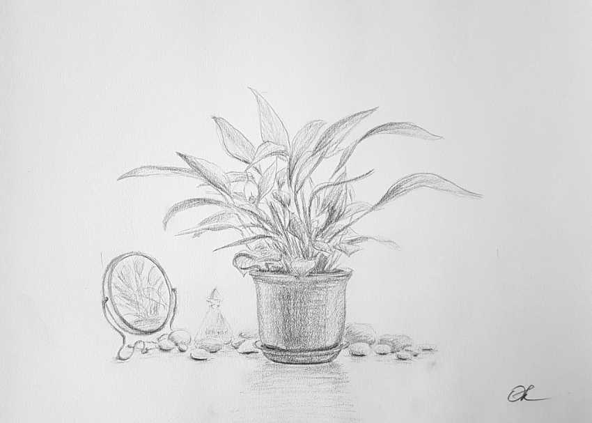 """Olha Krasko. """"Spathiphyllum"""" - photo 1"""