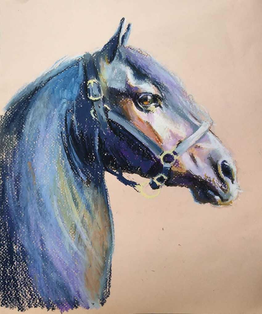 """Olga Kiryakova. """"Porträt einer schwarzen Pferd"""" - Foto 1"""