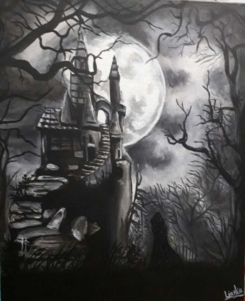 Diana Liasko. Castle in full moon - photo 1