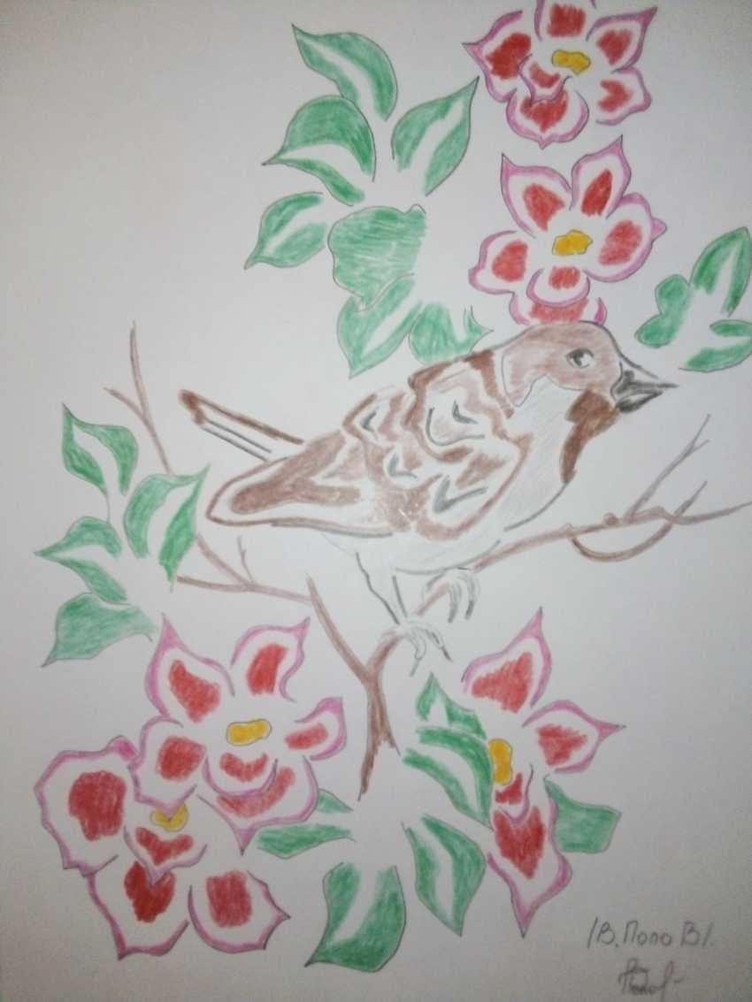 Vladimir Popov. Sparrow on cherry - photo 1