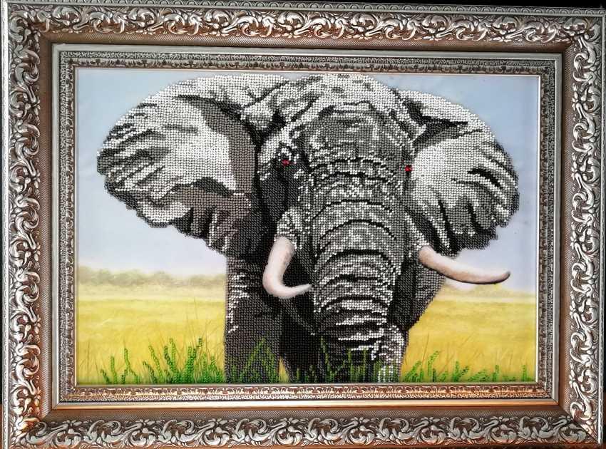 "Nataliia Kircheva. ""Elephant"" - photo 1"