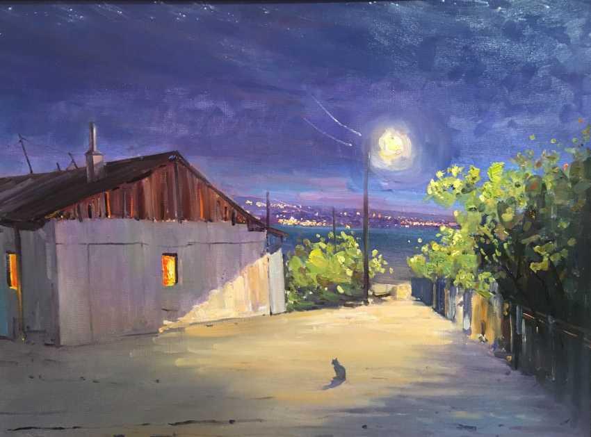 Андрей Сидорин. Ночное рандеву - фото 1