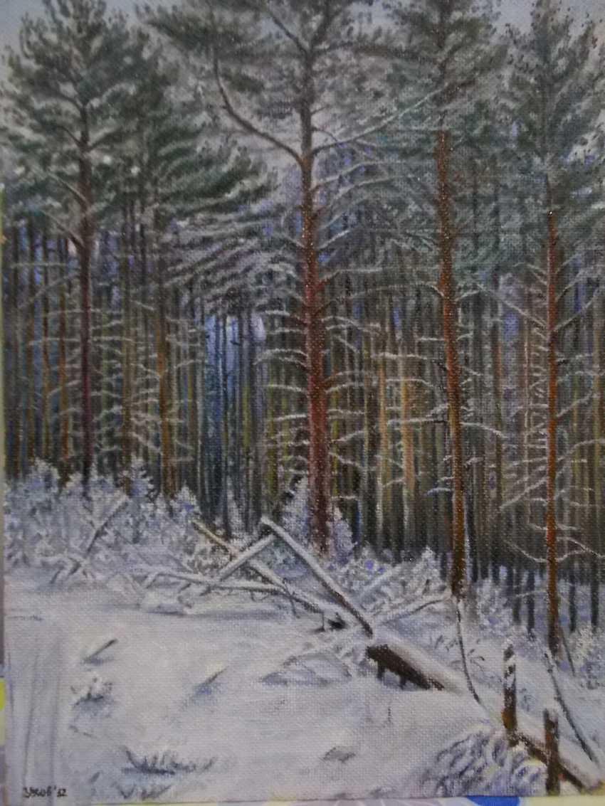 Artyom Ukhov. Im Winter Holz - Foto 1