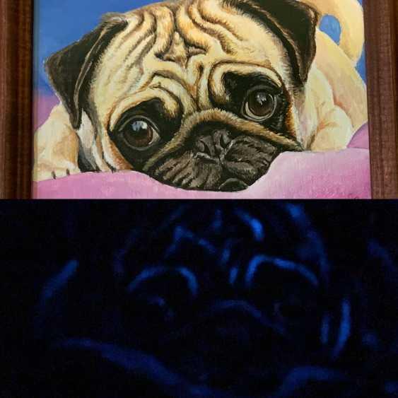 "Oksana Petrenko. ""Glowing pug"" - photo 1"