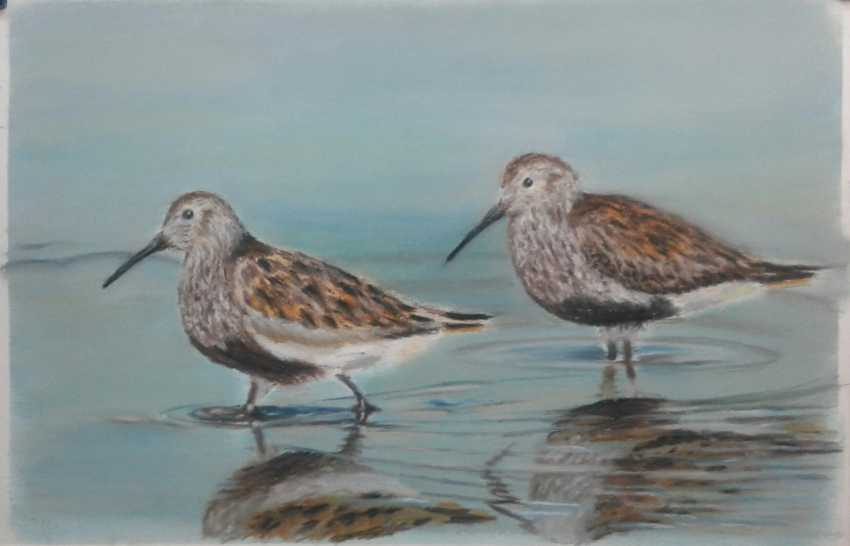 Aleksei Roshchanovskii. Dunlins - photo 1
