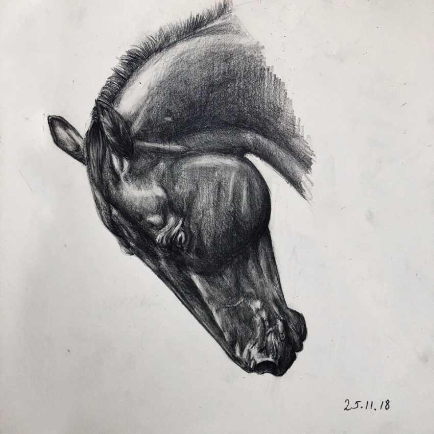 Karina Gorbatova. Horse - photo 1