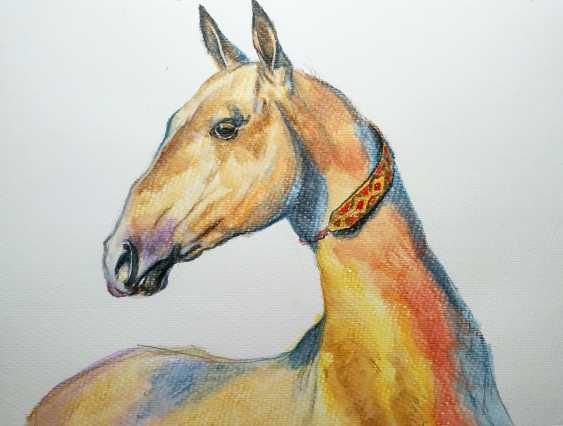 "Olga Kiryakova. ""Portrait of Akhal-Teke horse"" - photo 1"