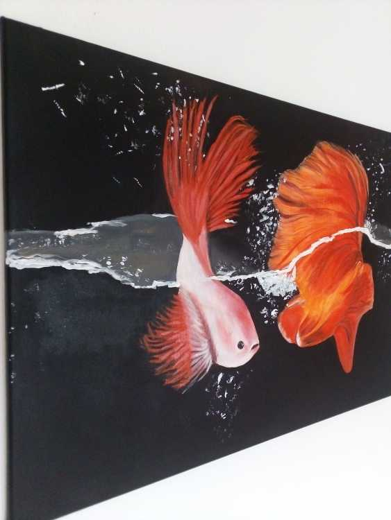 Elena Kovalenko. The beauty of the underwater world - photo 1
