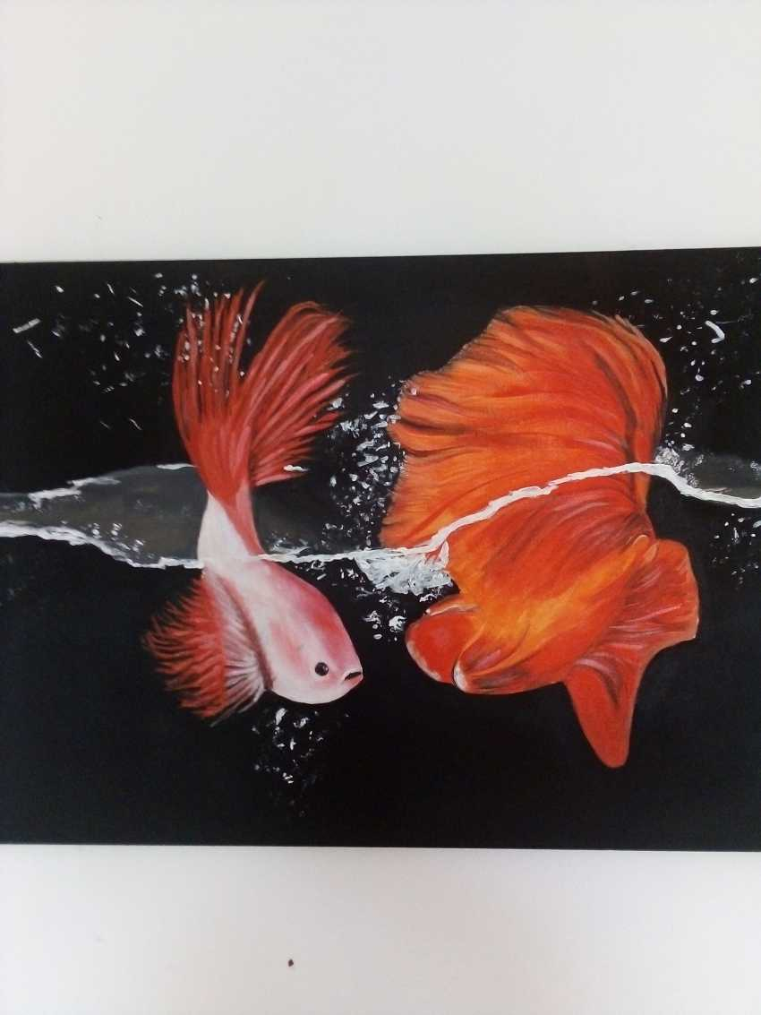 Elena Kovalenko. The beauty of the underwater world - photo 3