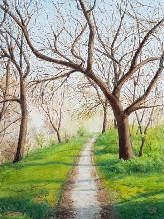 "Olha Krasko. ""The path of spring"" - photo 1"