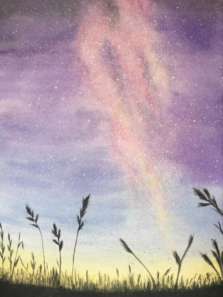 Ekaterina Sumina. The night sky in Altai - photo 1