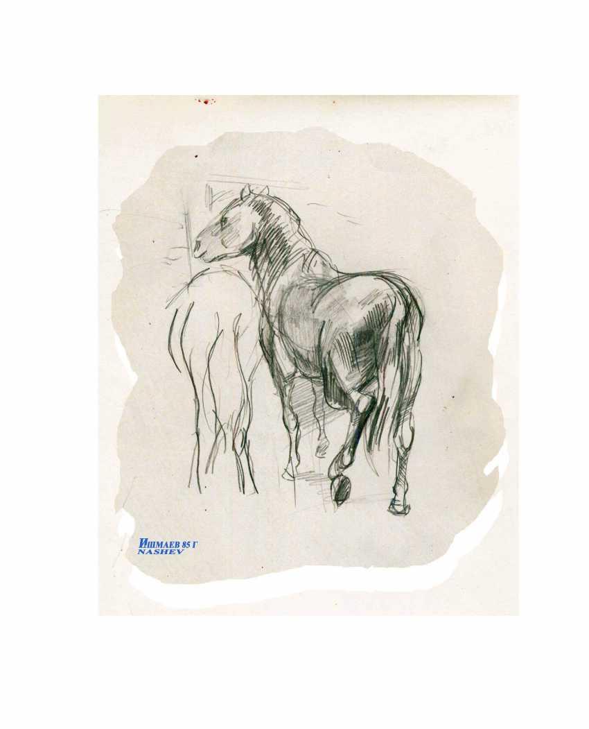 Eduard Ishmaev-Nashev. Bashkir horses - photo 1