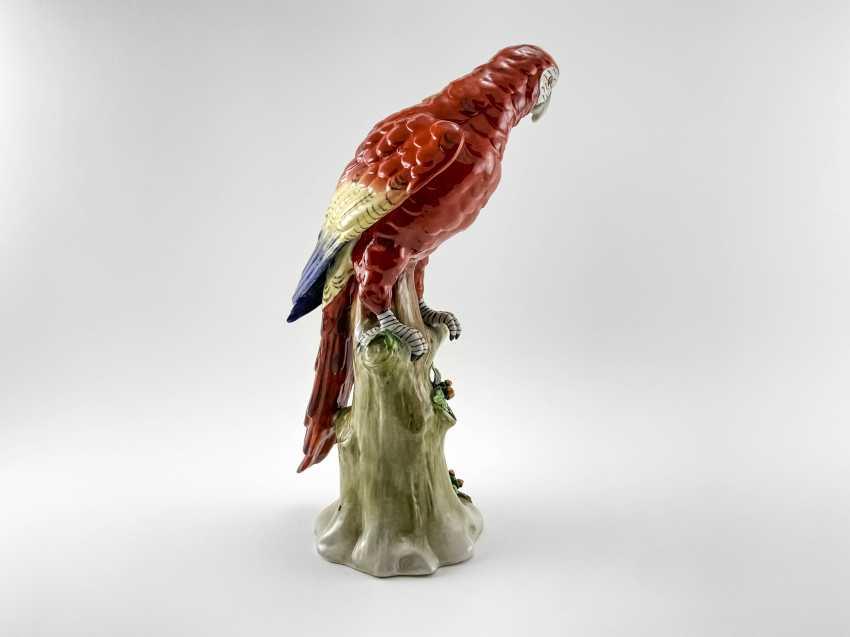 "Porcelain figurine ""Parrot"". Germany, Sitzendorf, handmade, 1918-1949gg. - photo 3"