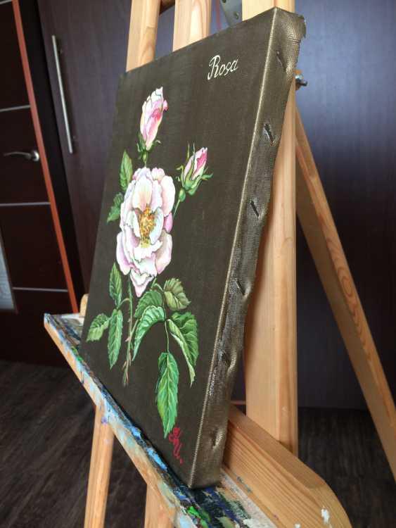 Natalia Ignatyeva. May rose may rose - photo 2