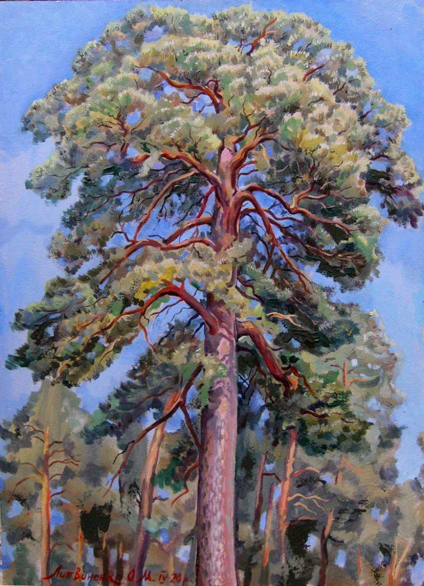 Oleg Lytvynenko. The top of the pine. - photo 1