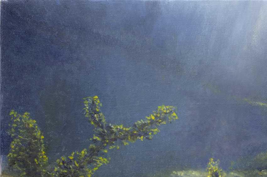 Andrey Smolensky. Sunny meadow - photo 3