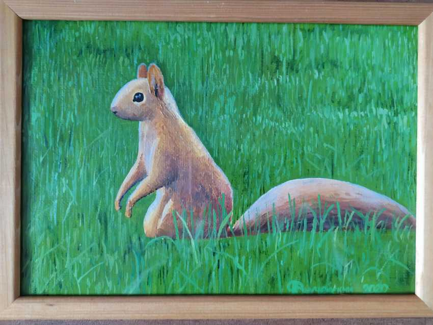 Candy Frozen. Northern squirrel - photo 1