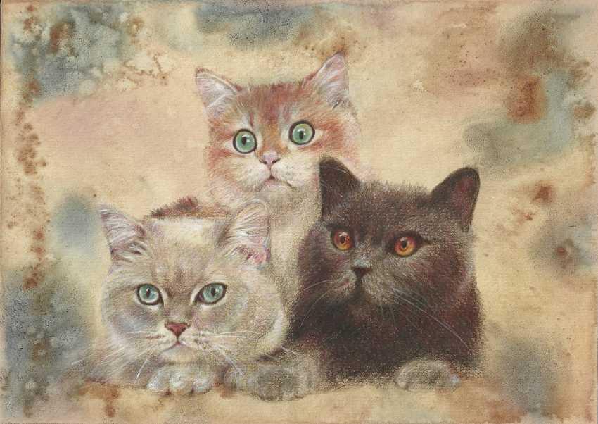 Natasha Mishareva. Without the cat and not the life. 2020. Handmade. The Author - Natalia Pisareva - photo 1